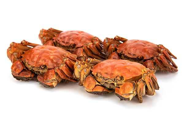 螃蟹17.jpg